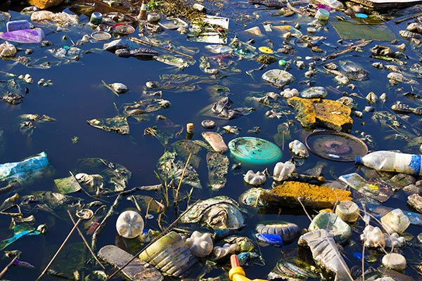 Picture of water that has been polluted